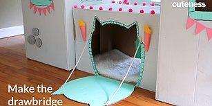 Kediler İçin Kartondan Muhteşem Bir Ev Tasarlamak Hiç de Zor Değil!