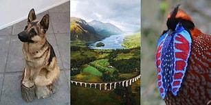 Muhteşemliğin Büyüsüne Kapılıp Etkisinden Bir Süreliğine Çıkamayacağınız 25 Şahane Görüntü
