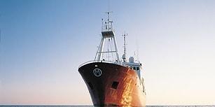 Yunan Sahil Güvenlik Botu Türk Gemisine Ateş Açtı: 'Gemide 16 Delik Var'