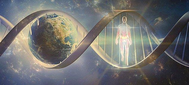 Hatta telomerlerin korunmasını denetleyen telomeraz enziminin kontrolü insan eline geçecek olursa insanın ölümsüzlüğüne karşı bir adım atılmış olabileceği kabul görmüş durumda.