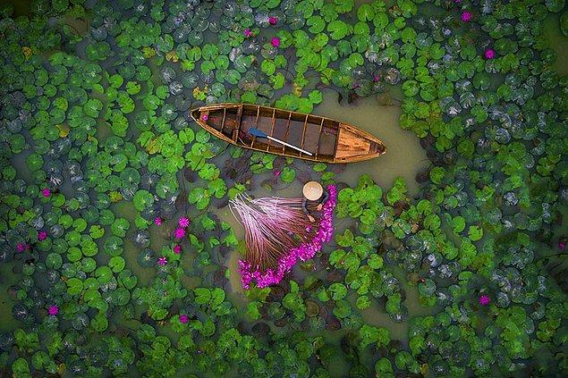 1. Nilüfer, Vietnam (İnsanlar, 2. sırada)