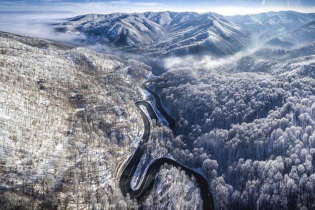 11. Transilvanya'ya Sonsuz Yol, Romanya (Doğa, Finalist)