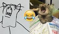 Yeteneksiz Ressamların Kedi Çizimlerini Gösteren Birbirinden Tuhaf ve Soyut 26 Kare