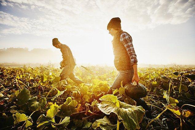 7. Çiftçinin fakirleşmesine engel olur.
