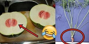 Bu Kadar Şanssızlık Olmaz! Yiyecekler Tarafından Ağır Hayal Kırıklığına Uğratılan 29 İnsan