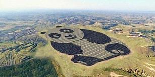 Yenilenebilir Enerjinin En Şirin Hali: Çin, Panda Şekilli Güneş Enerjisi Santralini Açtı!