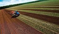 Günden Güne Eriyoruz: Türkiye 10 Yılda Tarım Alanlarının Yüzde 8.2'sini Kaybetti