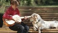 Araştırmalara Göre Köpeklerin En Sevdiği Müzik Türleri Belli Oldu: Rock ve Reggae