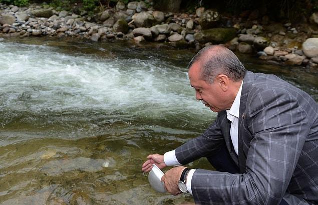 Cumhurbaşkanı Erdoğan 'Ayder'i rezil ettik' demişti.