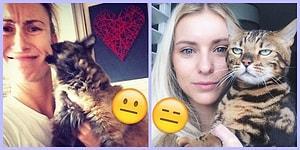 Fotoğraf Çekildiği İnsana 'Senin Abuk Subuk Selfielerinde Olmak İstemiyorum' Diyen 26 Kedi