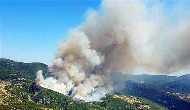 Aktarılan son bilgilere göre yangın kontrol altına alındı.