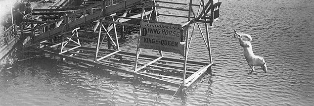 3. 1920 ve 1930'larda Atlantic City ve New Jersey gibi özellikle turist kentlerinde atlı dalış sporunun izleyicileri binlere ulaşıyordu.