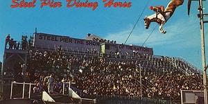 Bir Zamanların Popüler Fakat Acımasız Sporu Atlı Dalışın Geçmişinden 24 Fotoğraf