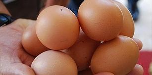 Damgasız Diye: Pazarda 15 Yumurta Satan Çiftçiye 15 Bin Lira Ceza!