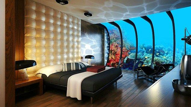 16. Her otel odasına bir akvaryum koymak yerine alın size kökten çözüm.