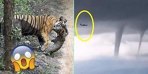 Baktığınız Anda Sıkıcı Geçen Gününüze Ayrıcalık Katacak 19 İlginç Doğa Görüntüsü
