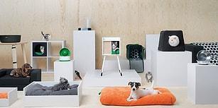 Patilere Konfor! IKEA'nın Minik Dostlarınızı Kendine Aşık Edecek Yeni Mobilya Koleksiyonu