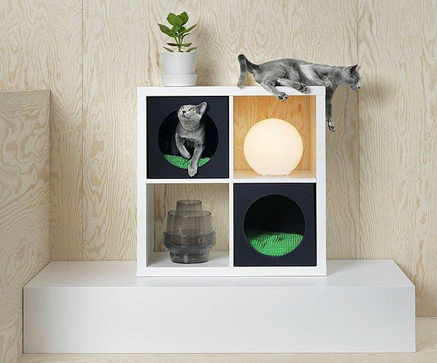 Kedilerin en sevdiği saklambaç oyunu ürünleri...