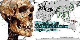 Kayıp İnsan Türü Neandertal'lere Sandığımızdan Daha Yakın Olabiliriz!
