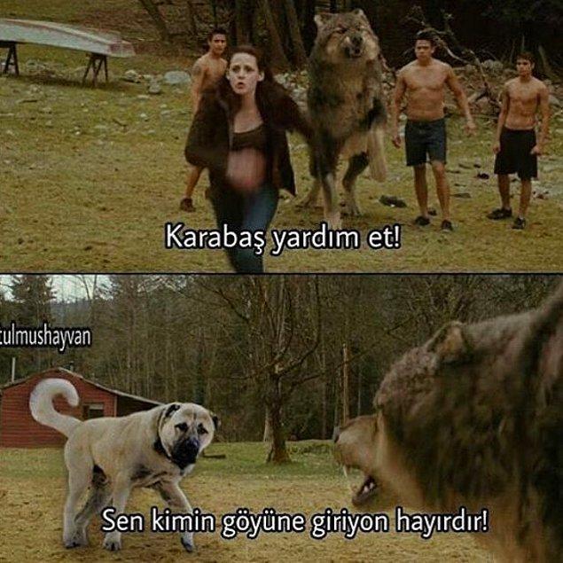 12. Twilight Sivas