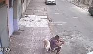 Yol Kenarında Oturan Adama Köpekten Kötü Sürpriz