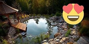 İnsanların Organik Sevdasının En Son Durağı Birbirinden Güzel 20 Organik Yüzme Havuzu