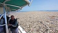 Çevreyi Nasıl Kirlettiğimizi Yüzümüze Tokat Gibi Çarpan 'Çöp Denizinden' Korkunç Manzaralar!
