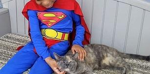 Evsiz Kedilere Yardım Etmek İçin Süper Kahraman Gibi Giyinen Kocaman Yürekli Çocukla Tanışın!