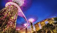Dünyanın 'En Geçerli Pasaportları' Açıklandı: Zirvedeki Ülke Singapur, Türkiye ise 44. Sırada