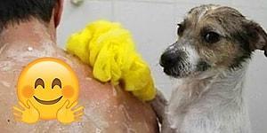 Evcil Hayvanlarla Olan Tatlış İlişkilerini Gösterip İçimizi Yumuş Yumuş Yumuşatan 15 Kişi