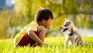 Bir Köpekle Yaşamanın Dünyanın En Muhteşem Şeyi Olduğunu Bilim de Doğruladı!