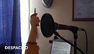 Orijinalinden Daha İyi: Despacito Şarkısına Yapılan Muhteşem Tavuk Cover'ı