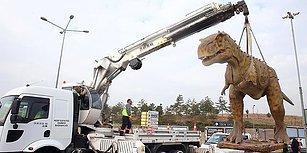 Fıskiyenin Ardından Dinozor da Gitti! Ankara'nın 'Kedili Logosu Sırada'