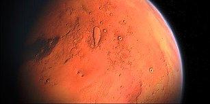 Sürekli Heyecanlanıyoruz: Bilim İnsanları Mars Toprağında Bitkinin Ardından Solucan da Yetiştirdi!