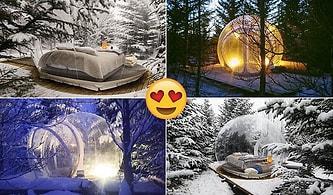 İzlanda'da Şeffaf Bir Balonun İçine Yatıp Yıldızları ve Kuzey Işıklarını İzleyebileceğiniz Otel