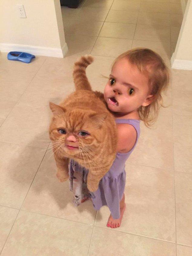 """1. """"En azından kedi tatlı duruyor."""""""