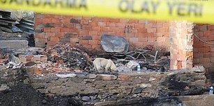Kastamonu'da İki Ev Kül Olmuştu... 5 Kişilik Çataloğlu Ailesi'nden 21 Gündür Haber Alınamıyor