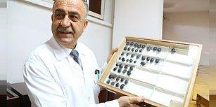 Keşfettiği Böceğe Babasının Adını Veren Profesör: Tiphia Bahattini