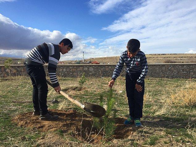Yetkililerin de takdirle karşıladığı çocuklara köye dikilmeleri için 125 adet çam fidanı gönderilmesine karar verildi.