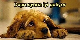 Köpek Sahiplenmeniz İçin Çok Geçerli Sebepler Var! İşte Köpeklerin Size Yapacağı İyilikler!