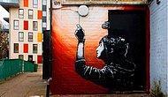 Renksiz bir hayatta canlanan  15 grafiti