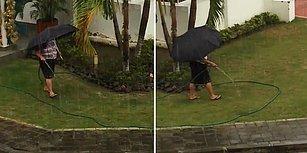 Sağanak Yağmur Altında Hortumla Bahçe Sulayan Kadın