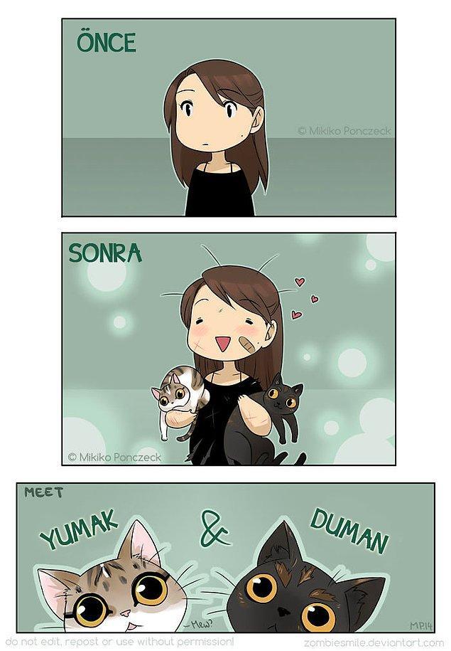 12. Her şeye rağmen kedilerimizi seviyoruz!
