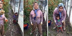 """Anadolu Kadınının Feryadı: """"Yemeyin Bizim Hakkımızı, Yedirmeyin!"""""""