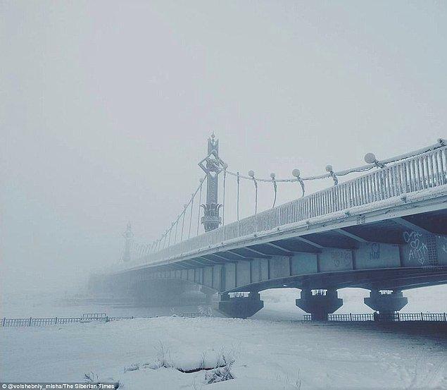 Kasabanın heryeri buzlarla kaplı!