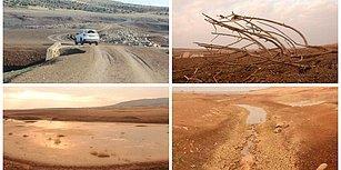Barajlar Kurudu, Göller Çekildi, Antep Fıstığı Yok Oluyor: Güneydoğu Anadolu Son 44 Yılın En Kurak Kışını Yaşıyor
