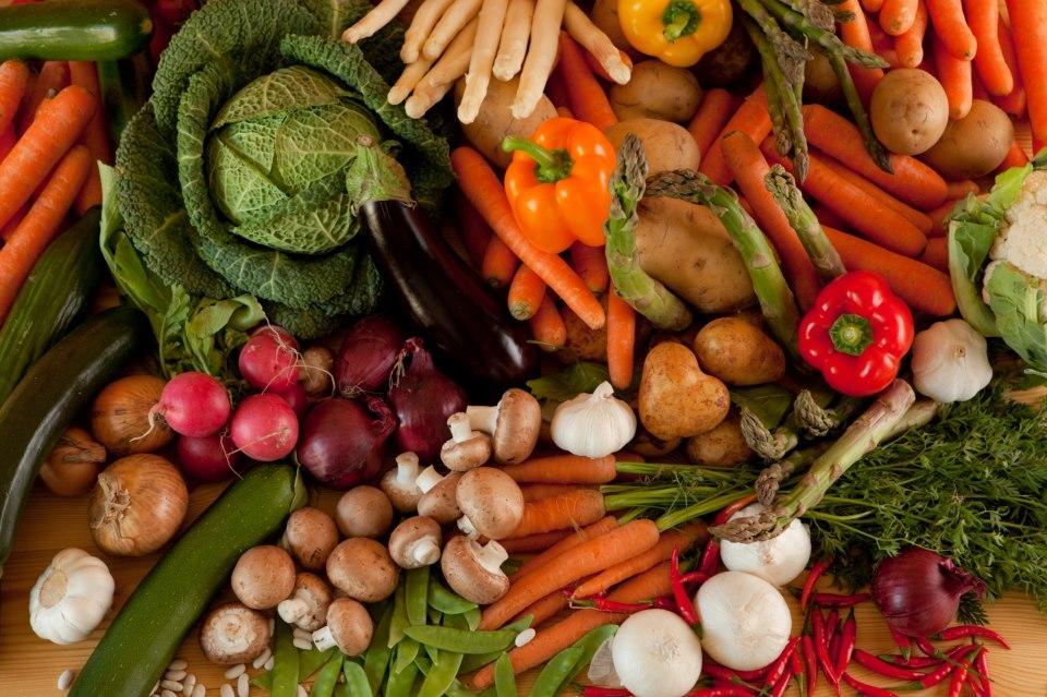 пищевые растения картинка брать