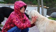Hayvanlara Karşı Yapılan Şiddete Ses Çıkararak Fark Yaratıyorlar: Hayvan Hakları İzleme Komitesi