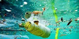 Tüm Dünyanın En Büyük Ortak Sorunu Plastik Atıklara Norveç Nasıl Bir Çözüm Buldu?