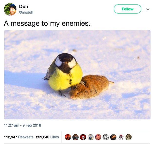 """20. """"Düşmanlarıma bir mesaj"""""""